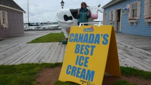 Cow`s Icecream