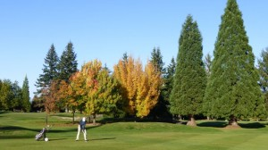 Golfen in Campbell River