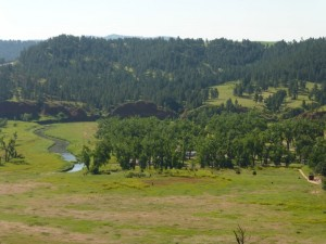 Devils Tower NP Campground 1