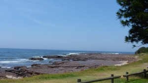 Shellharbour